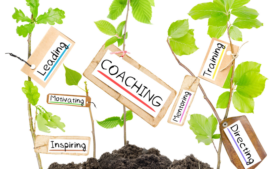 Life Coaching: The Accelerated Path to Creating a Life You Love